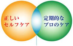 TDC_kenshin_001